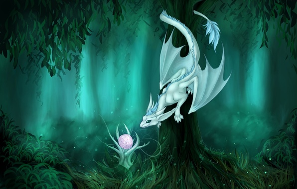 Picture forest, look, fiction, tree, dragon, plant, art, tail, curiosity