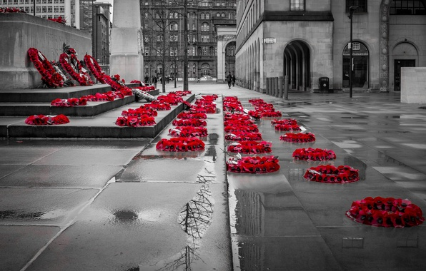 Picture the city, memory, street, wreath, memorial
