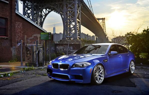 Picture car, bridge, BMW, five, bmw m5, hq Wallpapers