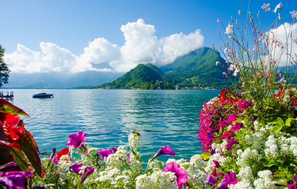 Picture sea, the sky, clouds, flowers, mountains, nature, boat