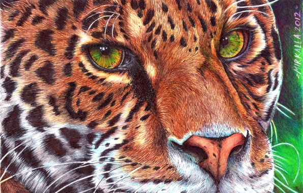 Picture mustache, look, face, animal, predator, leopard, painting, green eyes