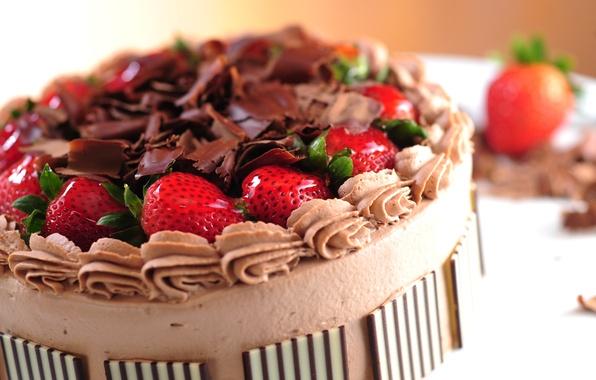 Picture berries, food, chocolate, strawberry, cake, cake, cake, cream, dessert, food, sweet, chocolate, dessert, berries, cheesecake, …
