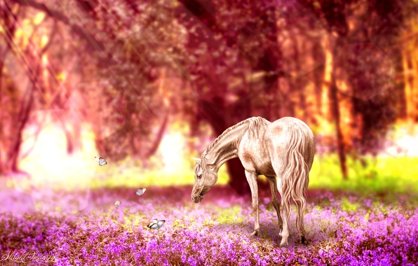 Photo wallpaper retouching, butterfly, horse, nature, flowers
