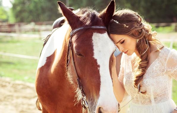 Picture summer, girl, the sun, mood, horse, dress, brown hair, walk, in white, bokeh