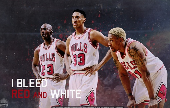 Picture Basketball, Michael Jordan, NBA, Michael Jordan, NBA, Basketball, Dennis Rodman, Scottie Pippen, Dennis Rodman, Scottie ...