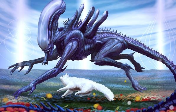 Picture cat, flowers, glade, stranger, running, friends, Alien, xenomorph