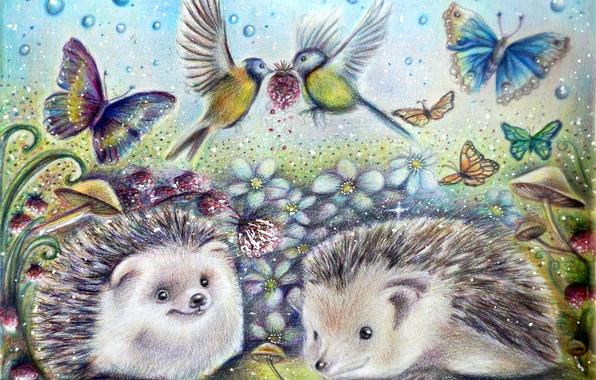Picture flowers, butterfly, mushrooms, art, hedgehog