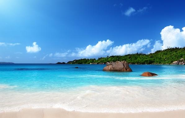 Picture sand, sea, beach, the sun, tropics, shore, summer, sunshine, beach, sea, ocean, sand