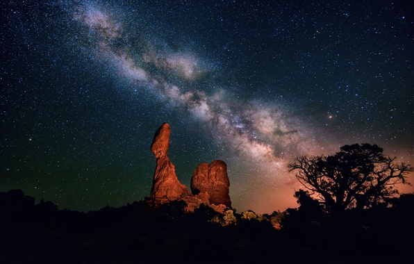 Picture the sky, stars, night, tree, desert, canyon, the milky way, silhouettes, the bushes