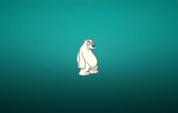 Picture minimalism, polar bear, bear, bluish background, charity