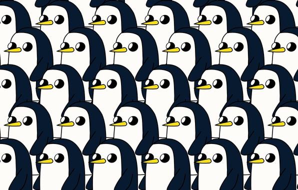 Wallpaper Toon Cartoon Penguin Character Adventure Time