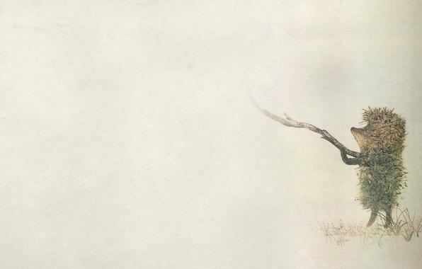 Picture fog, minimalism, weed, stick, darkish, hedgehog in the fog