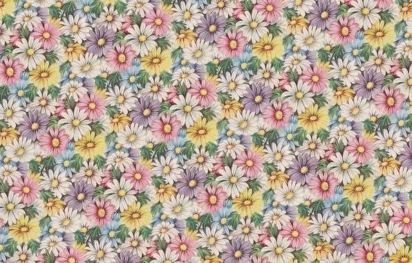 Picture flowers, background, mood, texture, art, vintage, kosmeya
