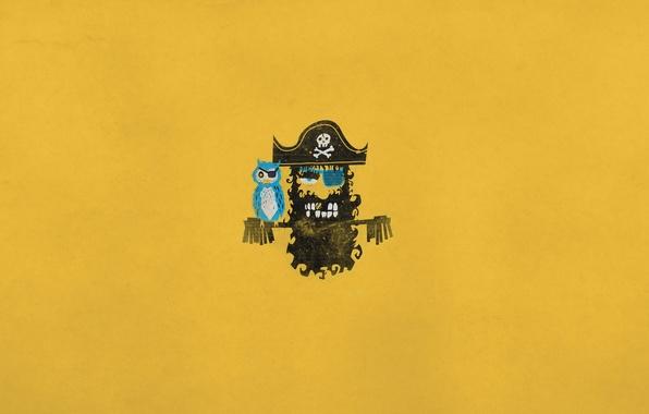Picture bird, skull, minimalism, hat, pirate, parrot, bones, headband, Blackbeard, gold tooth