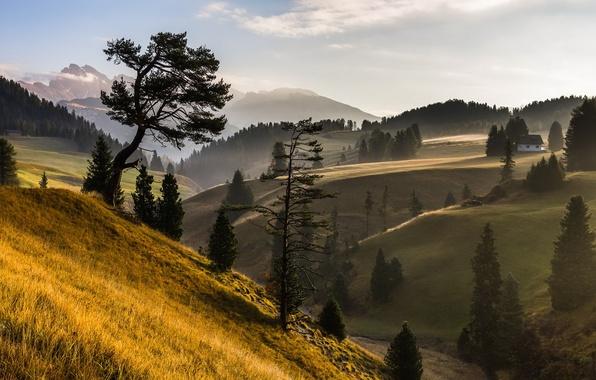 Picture landscape, mountains, fog, house