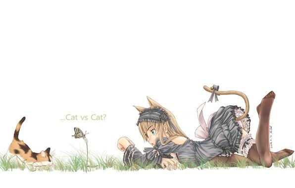 Picture mood, butterfly, girl, kitty, neko