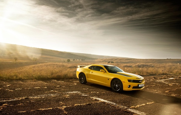 Picture Chevrolet, Muscle, Camaro, Car, Sun, Yellow, Bumblebee, Edition