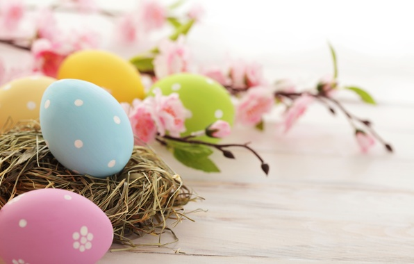 Picture flowers, holiday, eggs, branch, spring, yellow, blue, green, Easter, socket, pink, flowering, Easter, Easter