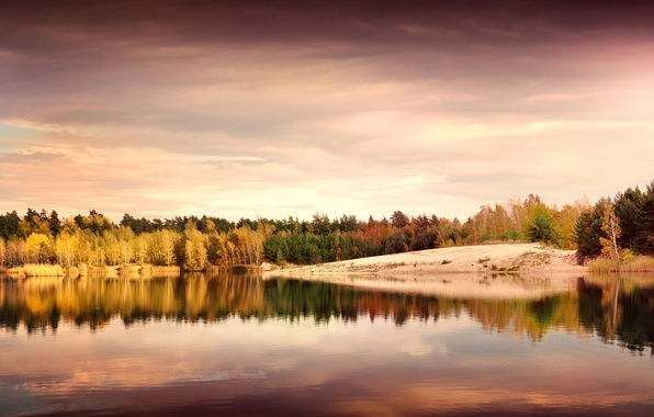 Picture autumn, leaves, trees, landscape, nature, lake, reflection, shore, the evening, yellow, Germany, green, Germany, The …