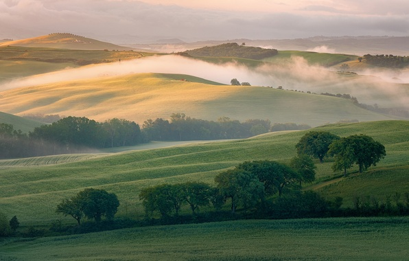 Picture fog, hills, field, morning, Italy, Tuscany