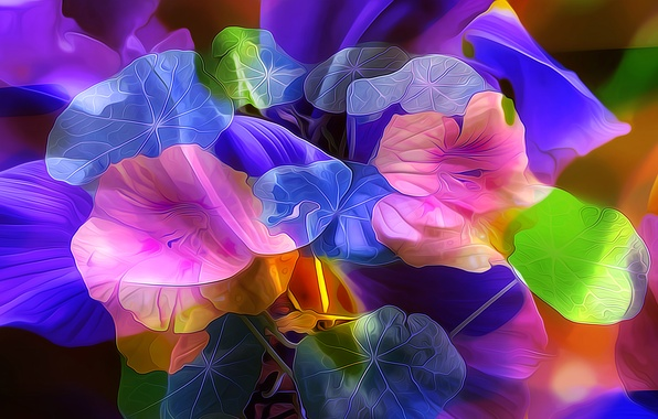 Picture leaves, flowers, nature, petals, garden, flowerbed