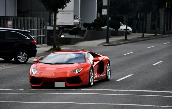 Picture road, trees, orange, markup, street, lamborghini, cars, orange, Lamborghini, headlights, aventador, lp700-4, aventador