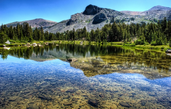 Picture forest, landscape, mountains, nature, lake, river, Yosemite National Park