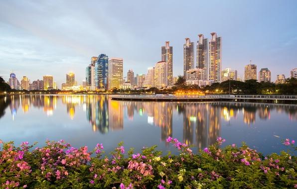 Picture water, Park, reflection, building, briar, Thailand, Bangkok, Thailand, promenade, skyscrapers, the bushes, Bangkok