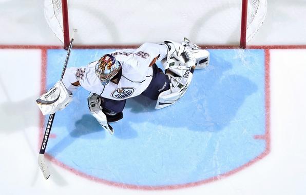 Picture ice, sport, the game, gate, hockey, goalkeeper, NHL, nhl, Edmonton oilers, oil, Nikolai Khabibulin, edmonton …