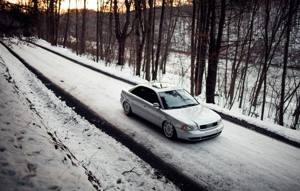 Picture forest, snow, Audi, Audi, stance, Doroga