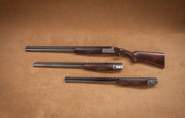 Picture trunks, the gun, butt