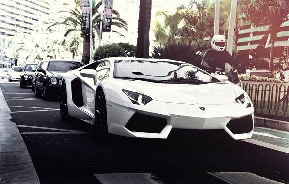 Picture road, white, summer, the sun, the city, palm trees, street, Lamborghini, motorcycle, Mercedes, Lamborghini, White, …