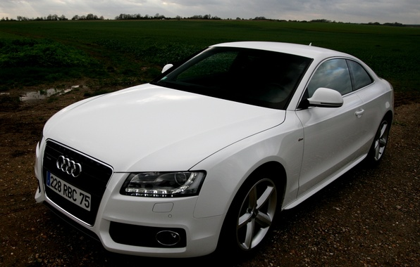 Picture Audi, white, Audi A5, Coupe, quattro