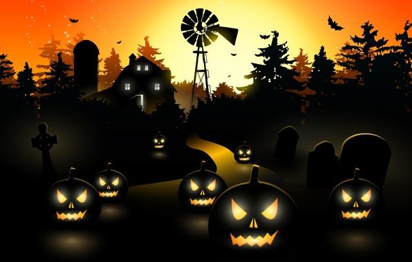 Picture trees, vector, vector, pumpkin, bat, horror, horror, trees, bat, midnight, pumpkin, midnight, creepy, creepy, holiday …