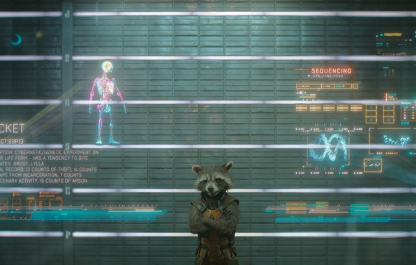 Picture marvel, marvel, Guardian of the galaxy, guardians of the galaxy, rocket raccoon, rocket raccoon