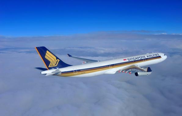 Picture The sky, Clouds, Singapore, Flight, Flight, Clouds, Sky, 300, Singapore, The plane, Passenger, Airbus, A330, …