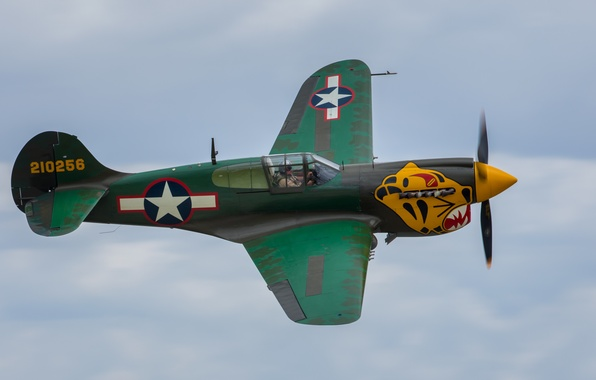 Photo Wallpaper Flight Fighter P 40 Warhawk