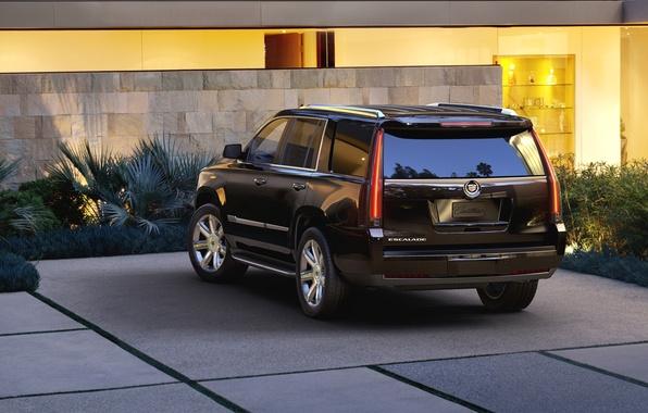 Picture background, black, jeep, SUV, rear view, Cadillac Escalade, Cadillac Escalade