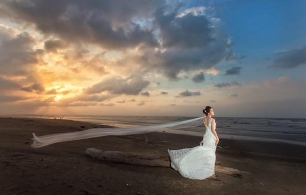 Picture sea, girl, the wind, shore, dress