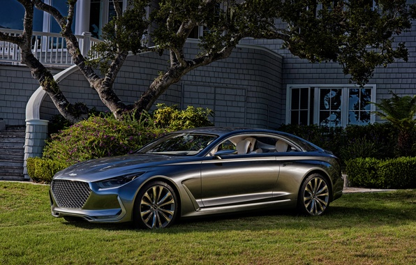 Picture Concept, the concept, Hyundai, 2015, Hyundai, Vision G