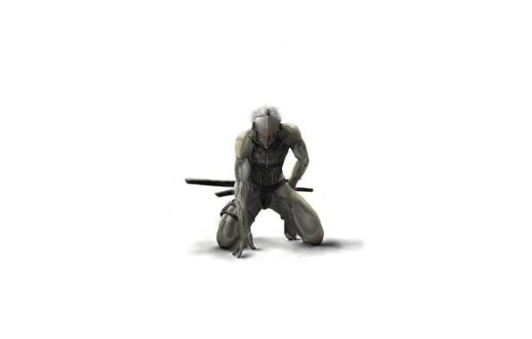 Picture Samurai, gray, on my knees