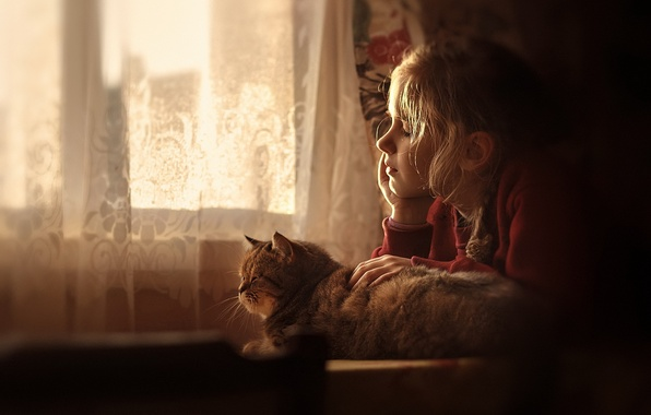 Photo wallpaper girl, cat, house