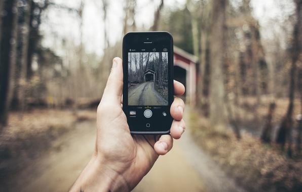Picture road, autumn, forest, leaves, trees, landscape, bridge, photo, iPhone, hand