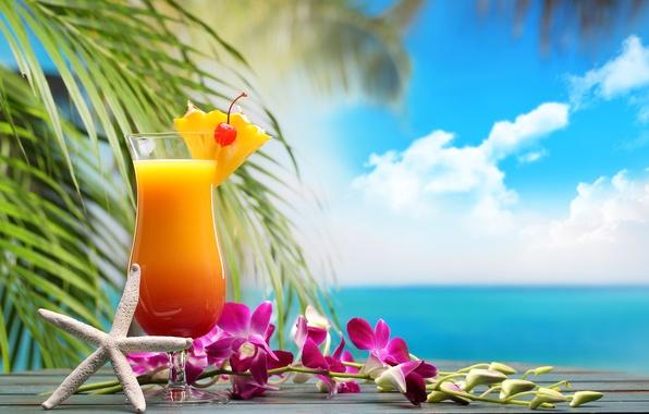 Tropical cocktails wallpaper