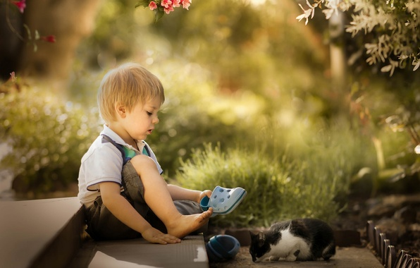 Picture boy, kitty, friends