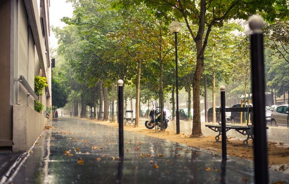 Picture road, trees, machine, the city, rain, street, France, Paris, building, home, Paris, the sidewalk, benches, …