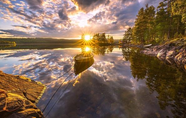 Picture trees, sunset, lake, reflection, boat, Norway, Norway, RINGERIKE, Ringerike