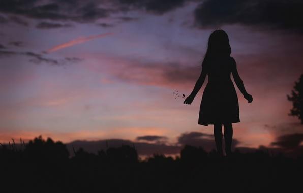 Picture dandelion, silhouette, girl, twilight