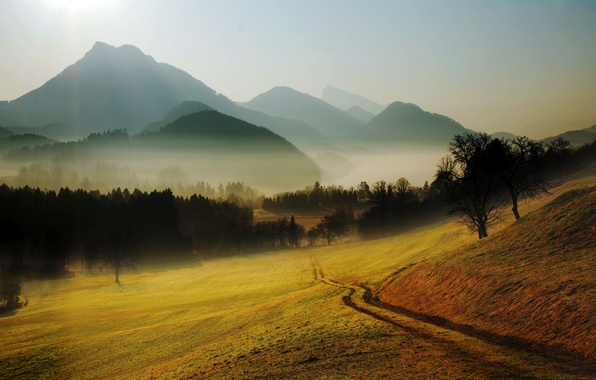 Picture road, forest, trees, landscape, mountains, nature, fog, hills, glade, horizon, haze, path