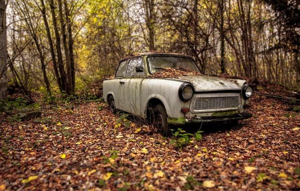 Picture machine, autumn, scrap